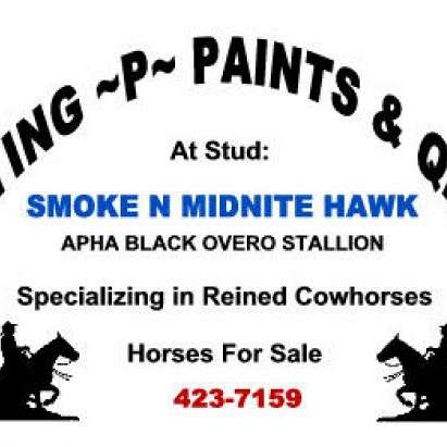 Flying P Paints & QH's