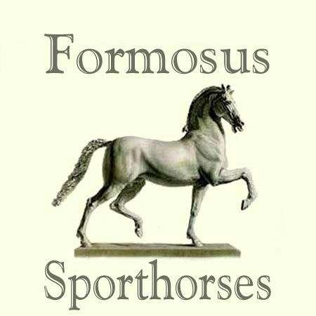 Formosus Sporthorses