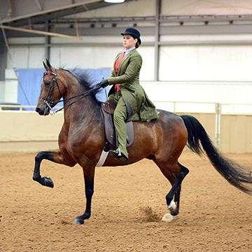 Wichita Riding Academy, Inc.