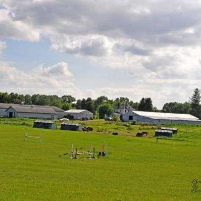 NorthView Equestrian Center