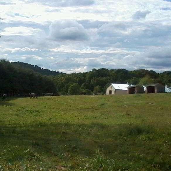 Stony Hill Farm