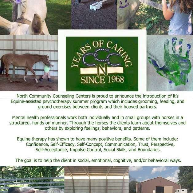 The Haven A Equine Therapy Site for North Communit