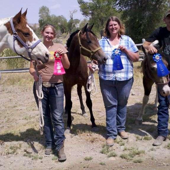 RDM Racing & Performance Horses