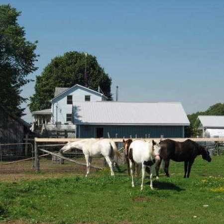 Peek-a-Boo Ranch