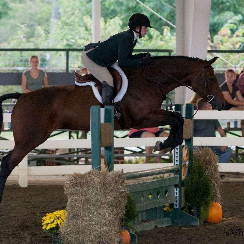 Meadow View Equestrian Center LLC