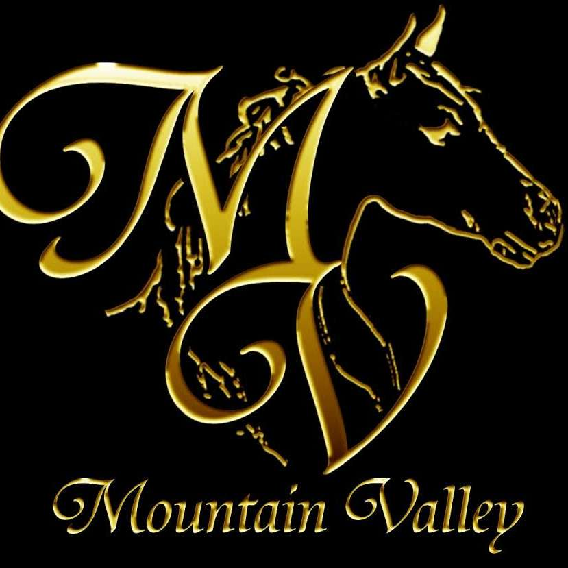 Mountain Valley Paints and Arabians