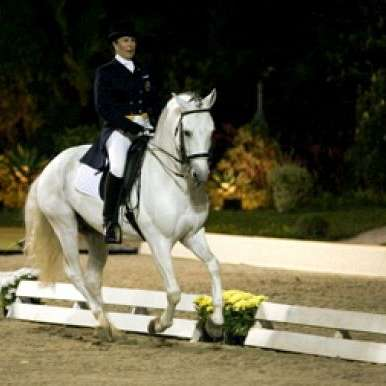 Sucandi Cavalos do Brasil