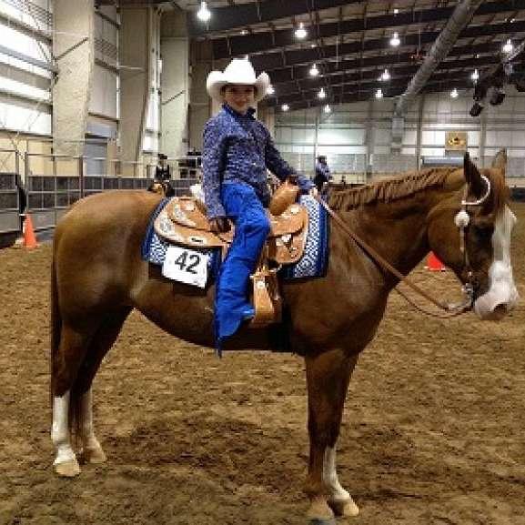 LA Ranch LLC Performance Horses
