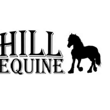 Hill Equine