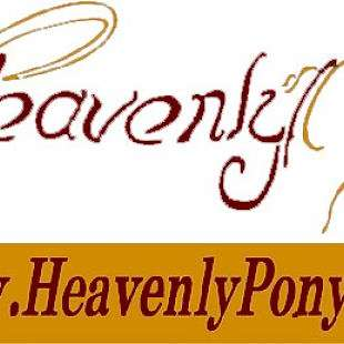 Heavenly Welsh Pony Farm