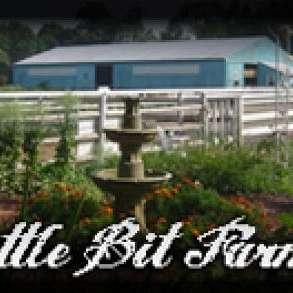 Little Bit Farm