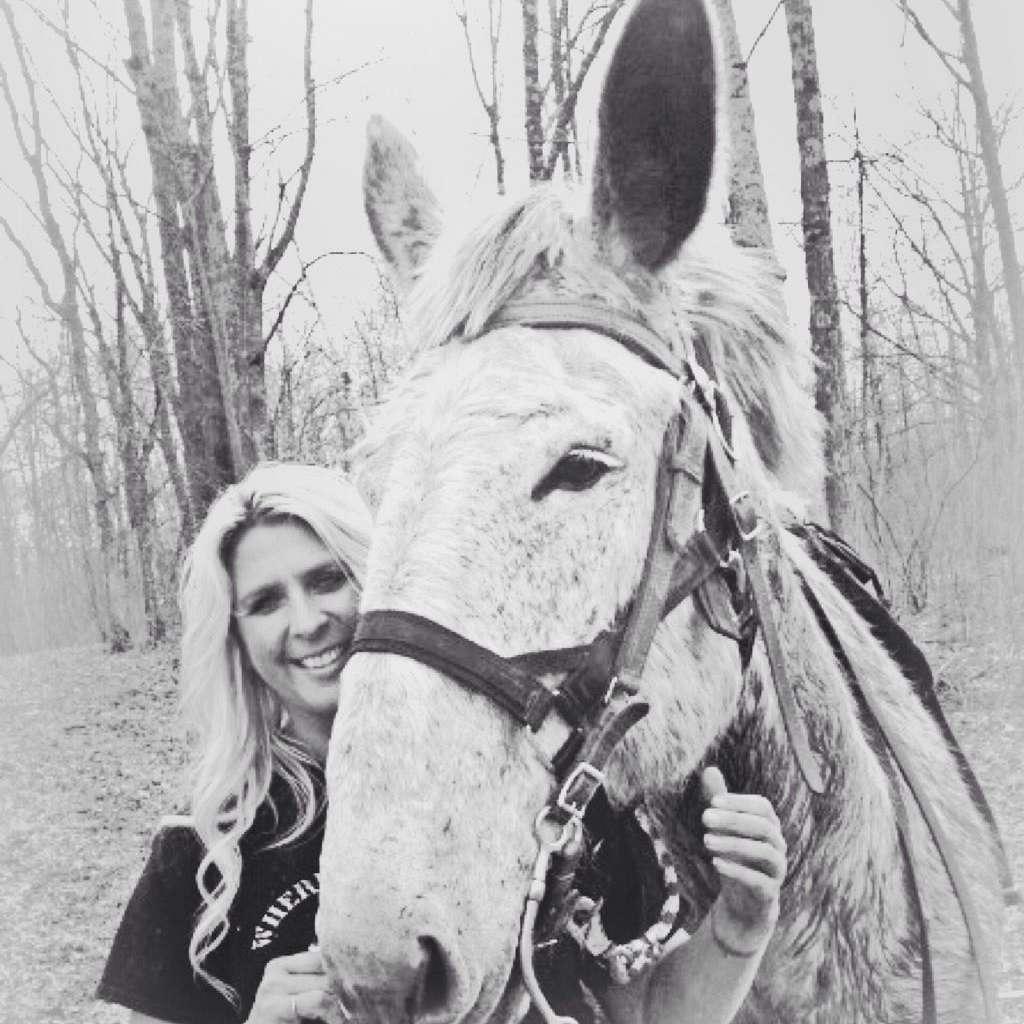 Rode-em-in Ranch