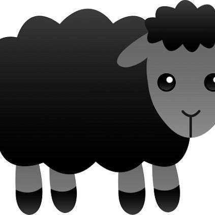 Black Sheep Equine Services