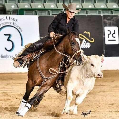 Michelle Gilles' Horse Training