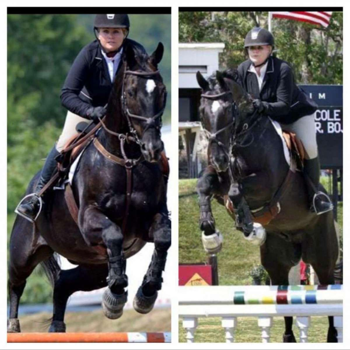 Global Equestrians Int. Riding School LLC