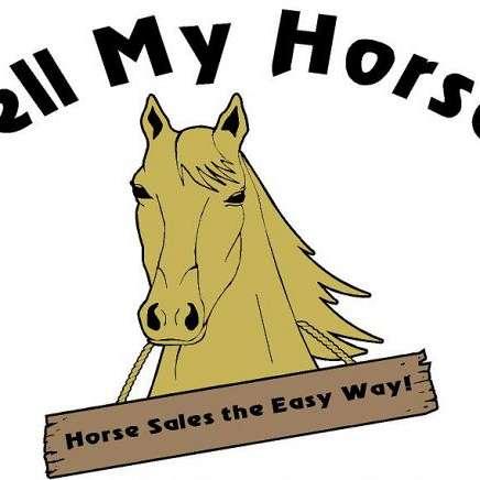 Sell My Horses