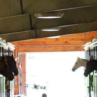 White Pole Stables