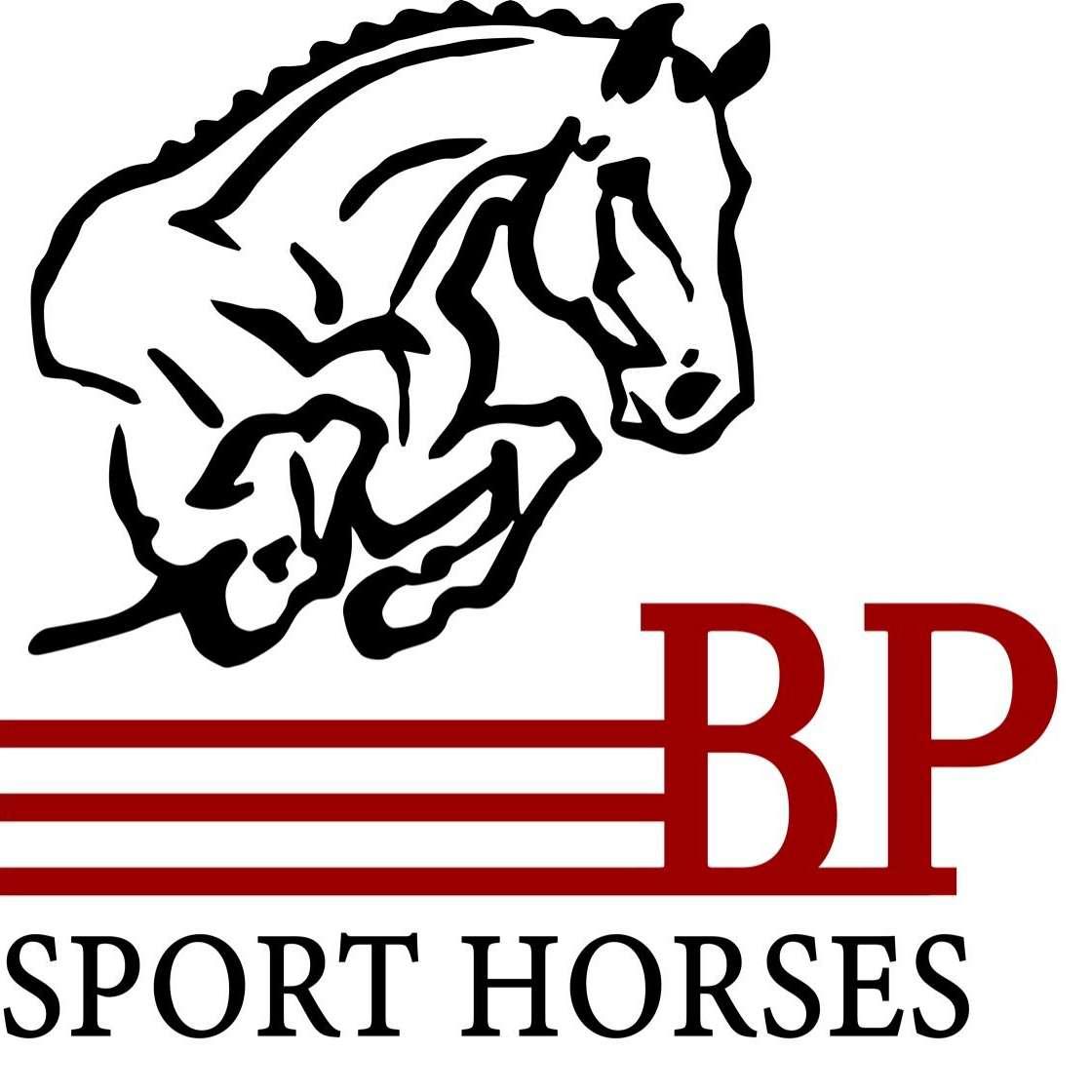 BP Sport Horses