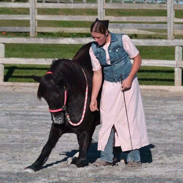 Unbridled Equine