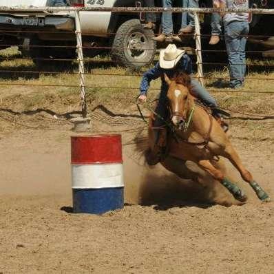 Lazy J7 Horse training