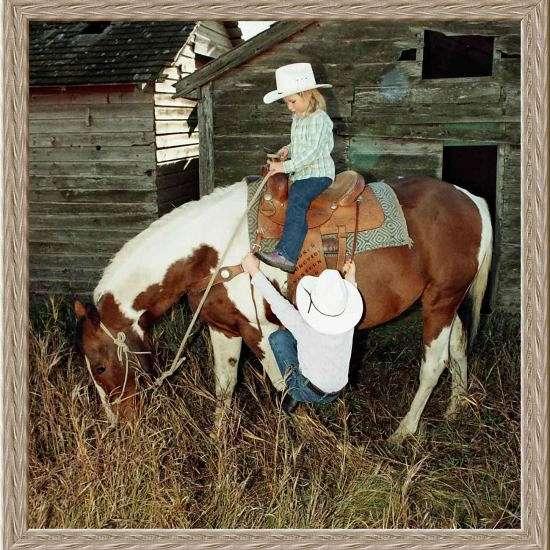Thomas Paint Horses