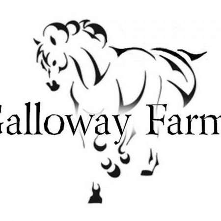 GALLOWAY FARMS