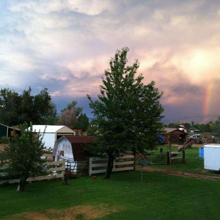 Desert Dreams Ranch
