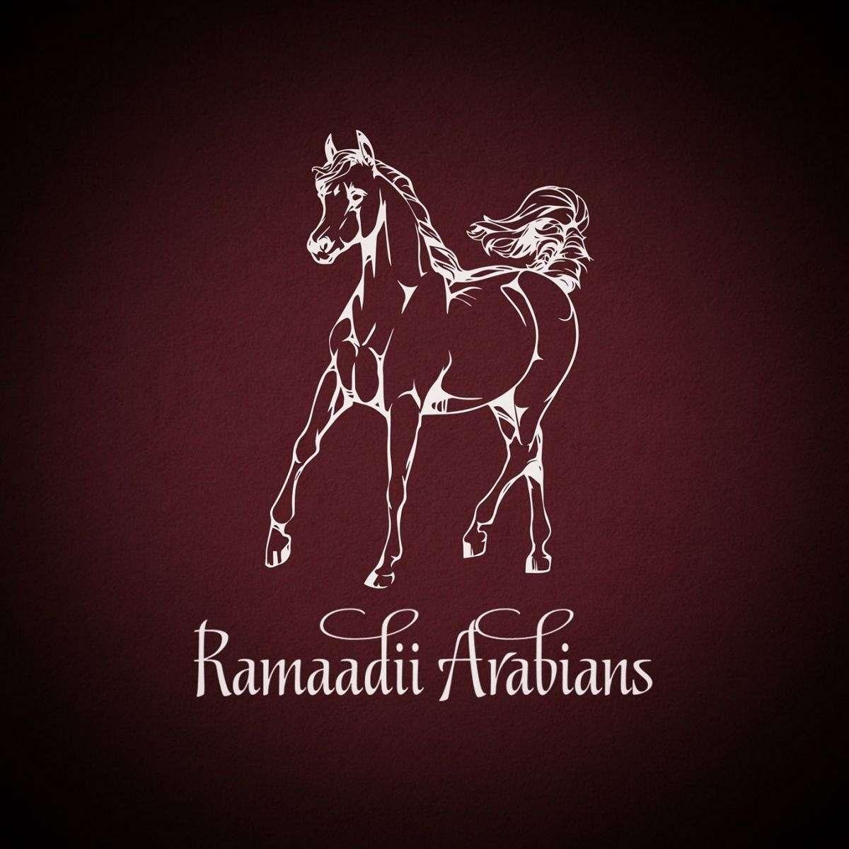 Ramaadii Arabians