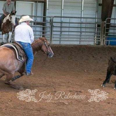 Propst Ranch Horses
