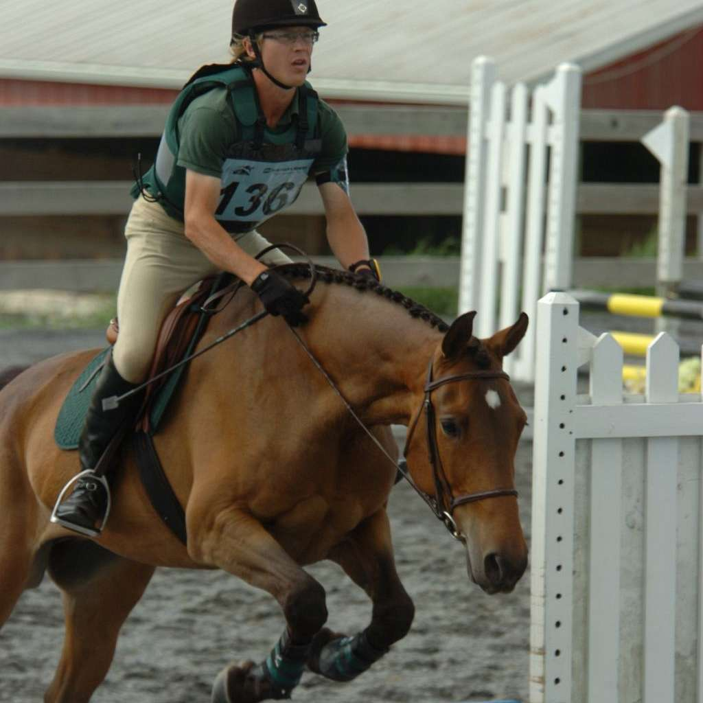 AGD Equine Services