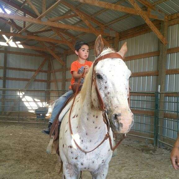 Shekinah Warriors Rescue Ranch