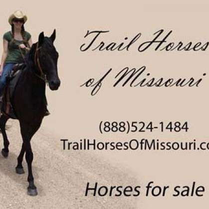Trail Horses of Missouri