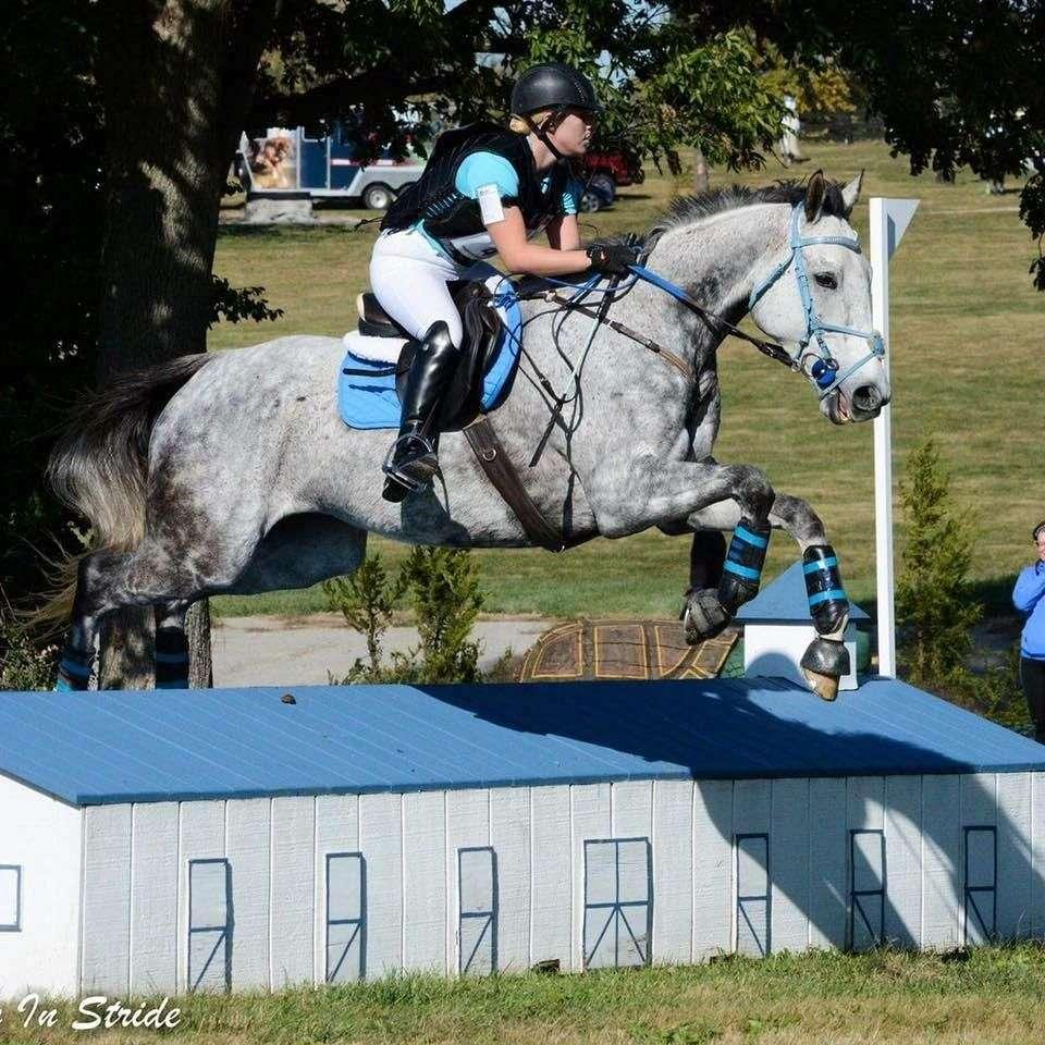 Silver Gate Equestrian