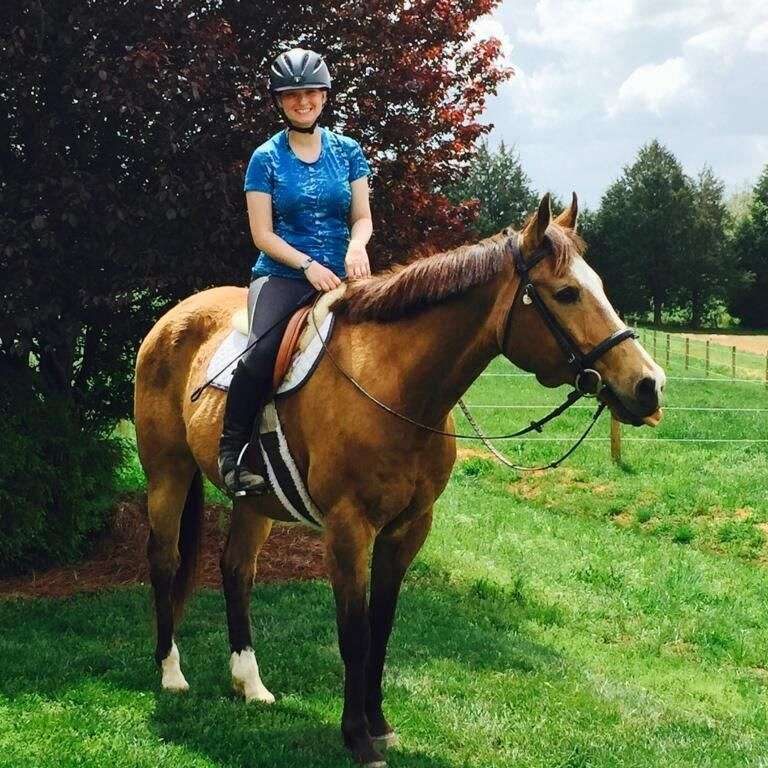 Sarah's Horse  Pet Services