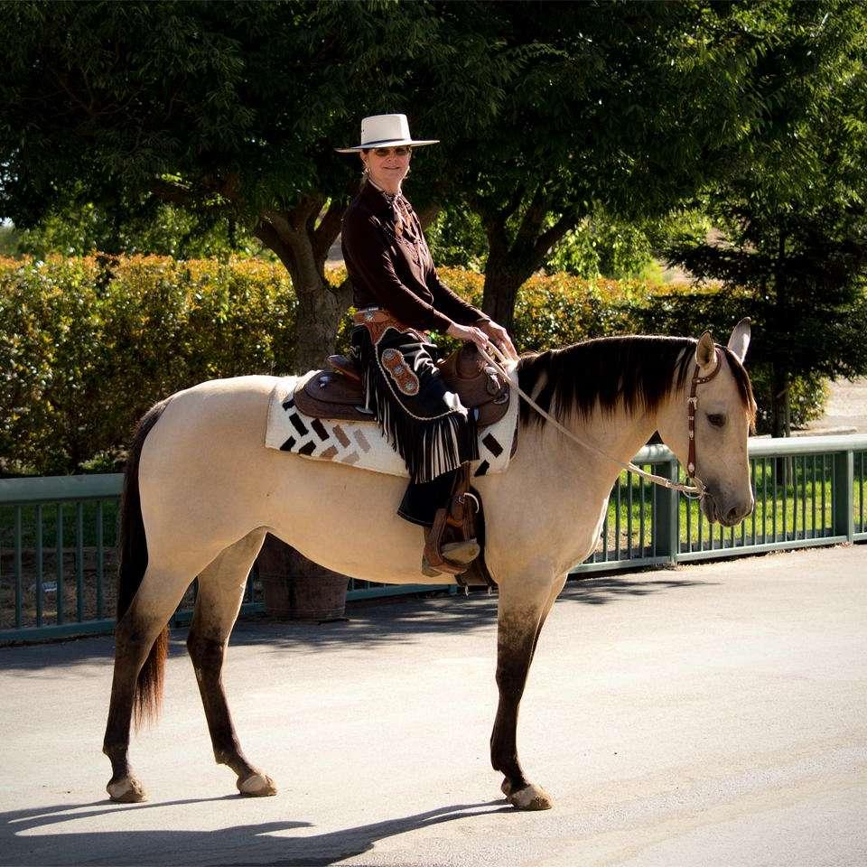 Knoll's Basic Horsemanship
