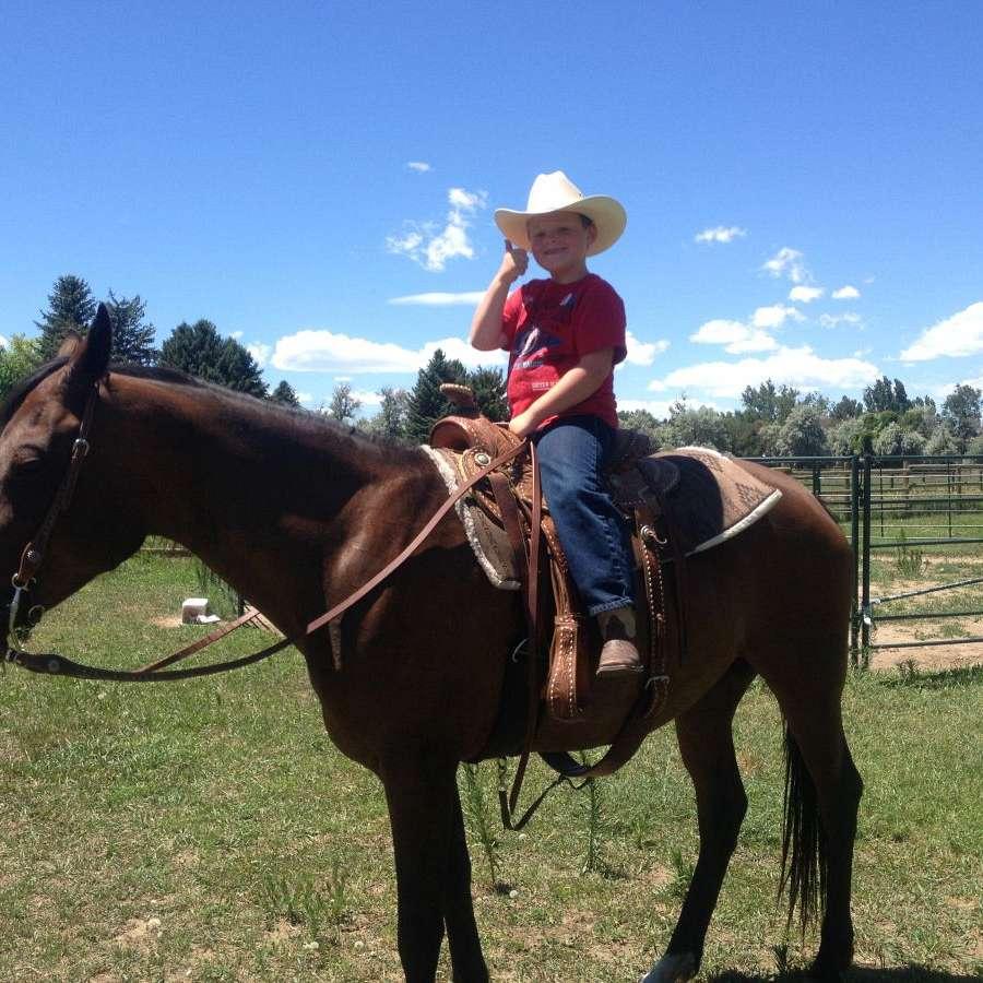 Silver Peaks Ranch LLC  Horse Boarding