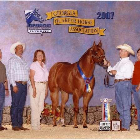 Glenn Gieschen Quarter Horses
