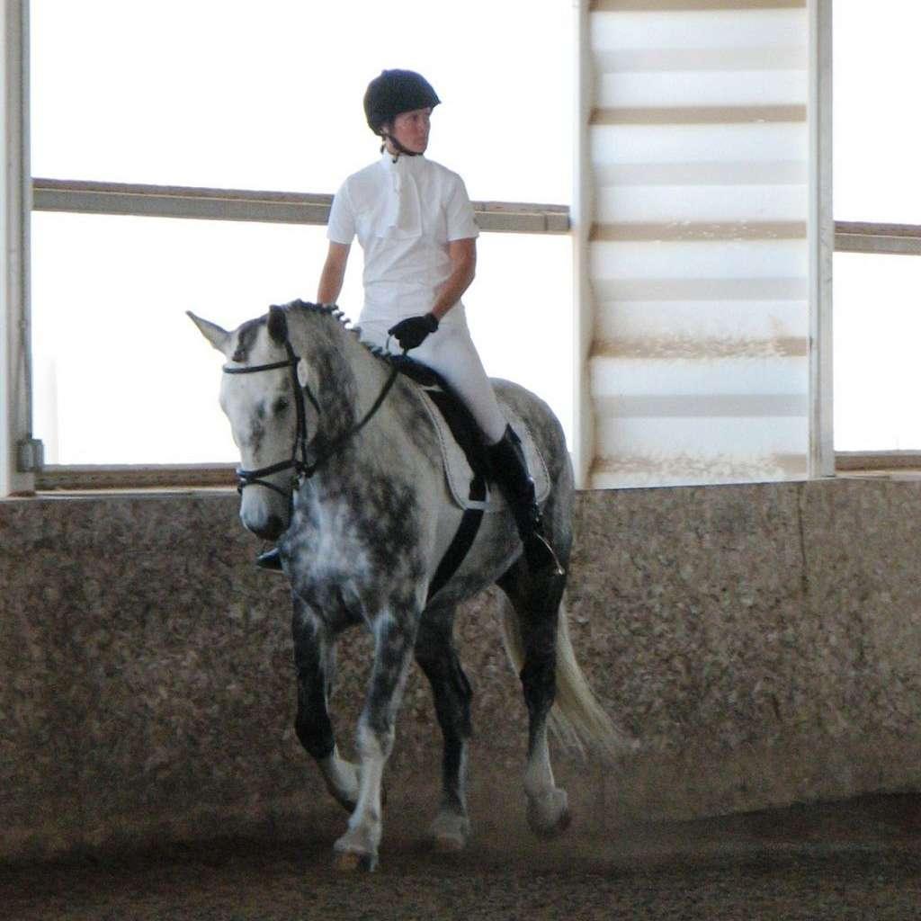 Hofmeister Farm - C3 Horsemanship