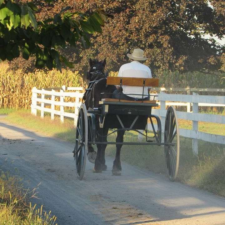 Amish Treasures