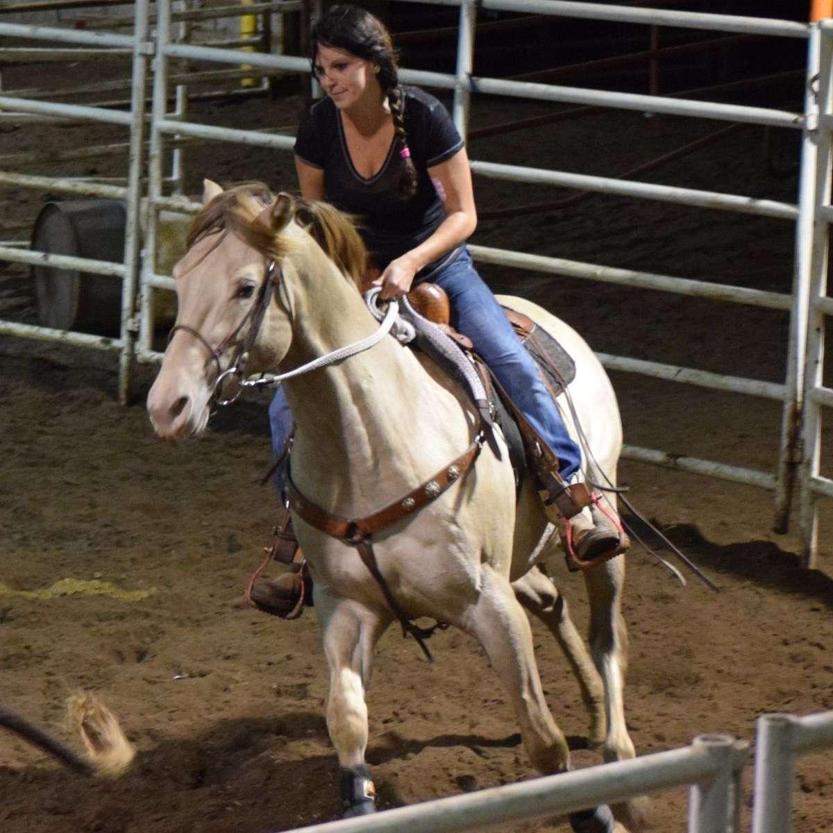 C & B Quarter horses