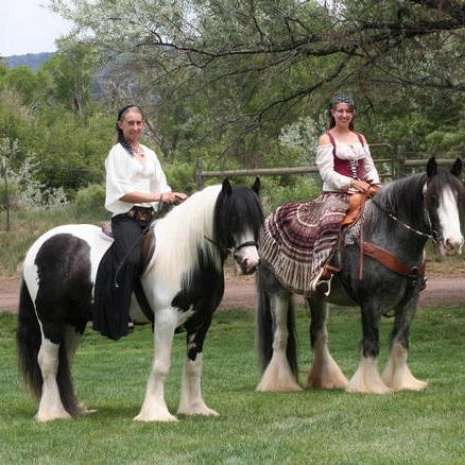 Edoras Stables, LLC
