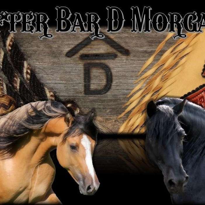 Rafter Bar D Morgans