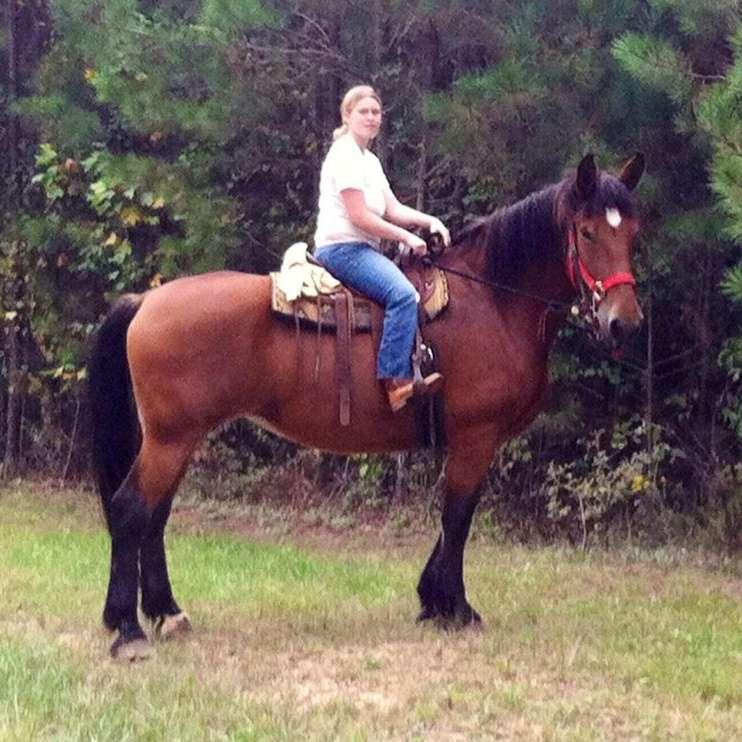JB Horsemanship