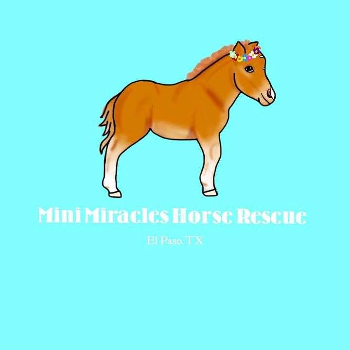 Mini Miracles Horse Rescue