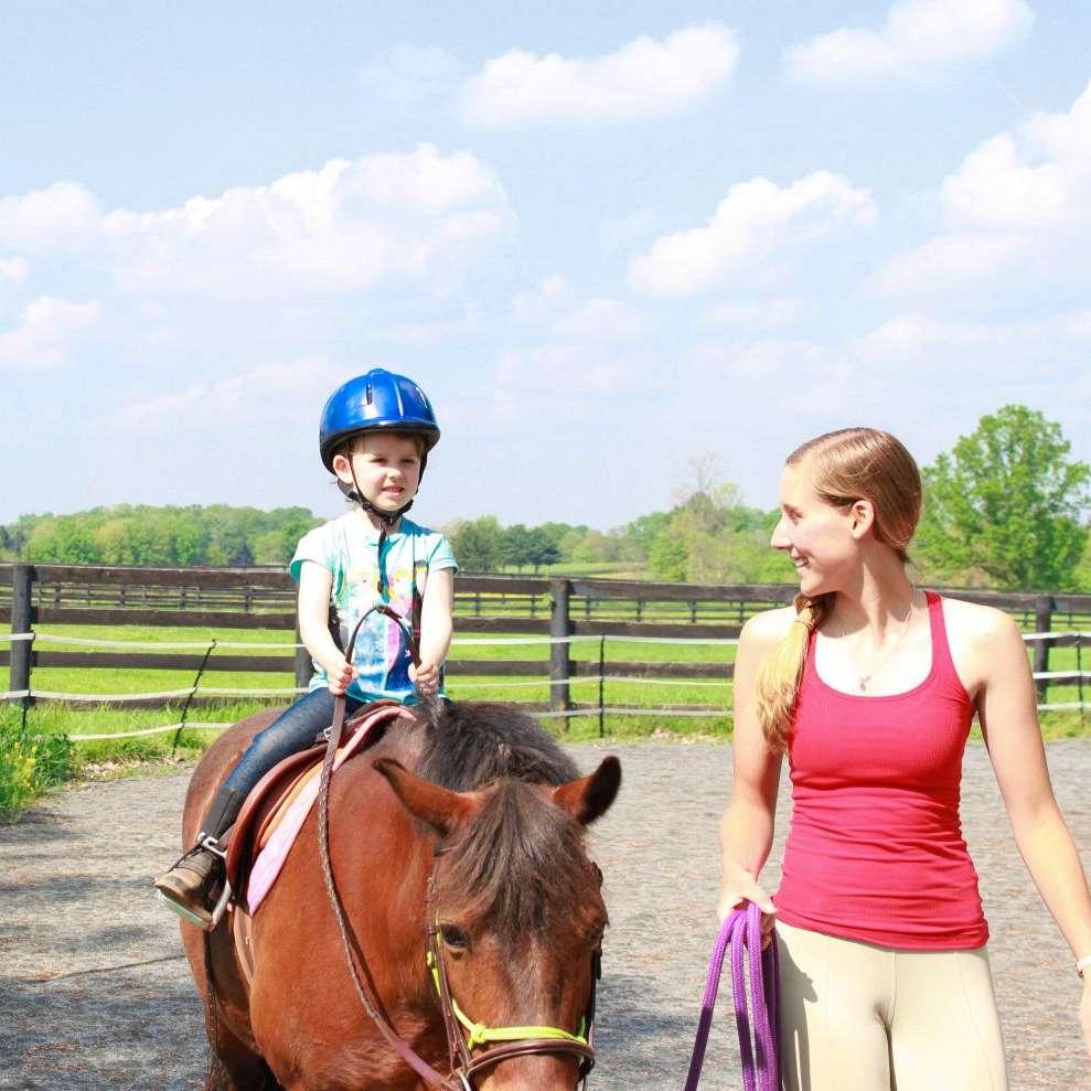 Nicole's Riding Lessons