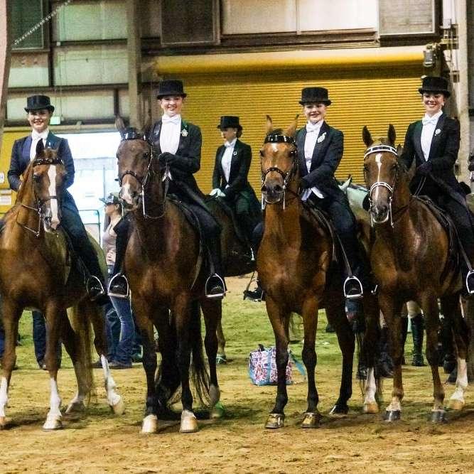 Firefly Equestrian Center