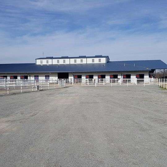 Joyful Noise Farm