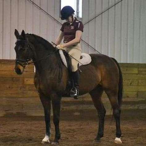 Kruse - Exercise Riding-Training