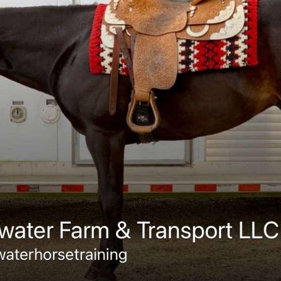 Blackwater Horse Stables  Training LLC