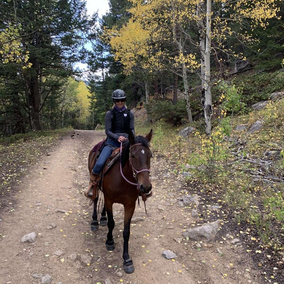 Heartwaves and Hoofbeats Horsemanship